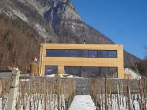 Holzelementbau mit grossen Fensterfronten